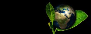 Cursos turismo y desarrollo sostenible